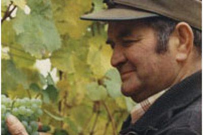Johannes Schmitt