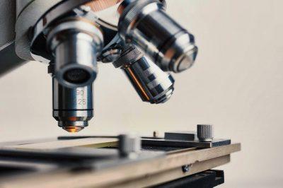 Mikroskop im Weinlabor