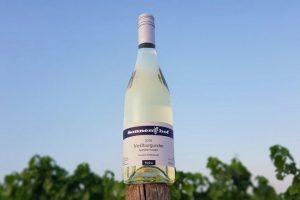 Weißburgunder Flasche im Feld
